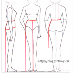 Как  снять мерки для построения выкройки юбки